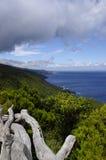 Kustlinjen av den Pico ön, Azores Arkivbilder