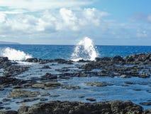 Kustlinjen och kraftfulllava vaggar kallade Dragon's tänder, och att krascha vinkar på Makaluapuna punkt nära Kapalua, Maui, HI arkivfoton