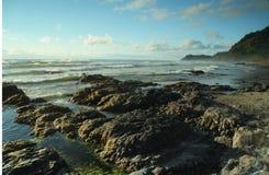 kustoregon stående Fotografering för Bildbyråer