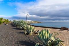 Kustpromenade met tropische installaties in Playa-Blanca Stock Foto's