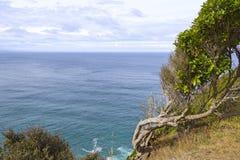 Kustscène dichtbij Goudklompjepunt en Waipapa, Nieuw Zeeland stock fotografie
