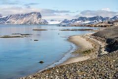 Kuststrand i Spitsbergen, arktisk Arkivfoton