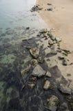 Kuststrand met stenen Stock Afbeelding