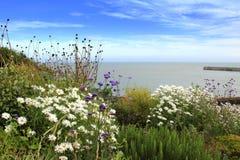 Kustsynvinkel Kent UK för engelsk kanal Arkivfoto