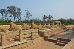 Kusttempel i Mahabalipuram, Indien Royaltyfria Bilder