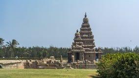 Kusttempel på Mahabalipuram med gräsmatta framme royaltyfri fotografi