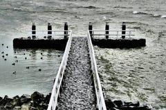 Kuszetka na Afsluitdijk Zdjęcia Stock