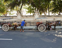 Kuta, Bali horse cart Royalty Free Stock Images