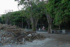 KUTA, BALI 12 MARZO 2019: Rifiuti sulla spiaggia del mare tropicale Spreco legno e sporco di plastica dell'immondizia, della schi fotografia stock