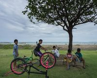 KUTA/INDONESIA-JANUARY 14 2018年:与他们的自行车一起的一些巴厘语孩子,在树坐在海滩附近,聊天 免版税图库摄影