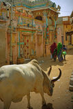 Kutch village scene, India Royalty Free Stock Images