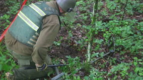 KUTINA, CROATIA - JUNE 2014: Man trying to detect mine in demining process in the middle of forest. stock footage