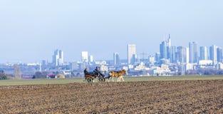 Kutscher mit Pferdezug und die Skyline von Frankfurt Stockfotografie