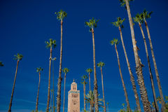 Kutubijja mosque,marrakesh. Mosque of Kutubijja in Marrakesh (Morocco)surrounded by palm trees Stock Photography