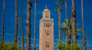 Kutubijja mosque,marrakesh 2. Close up of the Mosque of Kutubijja in Marrakesh (Morocco)surrounded by palm trees Royalty Free Stock Photo