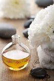 Kuuroord en aromatherapy reeks stock foto