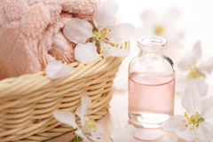 Kuuroord en aromatherapy reeks stock afbeeldingen