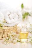 Kuuroord en aromatherapy reeks royalty-vrije stock afbeeldingen