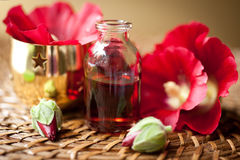 Kuuroord en aromatherapy reeks. royalty-vrije stock fotografie