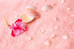 Kuuroord teder concept met roze bloemfuchsia, zeeschelpen op delica Stock Afbeeldingen