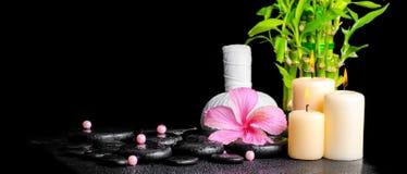 Kuuroordconcept hibiscusbloem, bamboe, Thaise kruidenkompresbal Royalty-vrije Stock Foto's