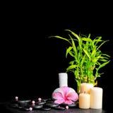 Kuuroordconcept hibiscusbloem, bamboe, Thaise kruidenkompresbal Royalty-vrije Stock Foto