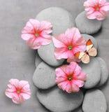 Kuuroordconcept met bloem, vlinder en zen stenen Stock Fotografie