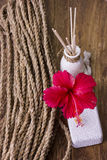 Kuuroordconcept met hibiscusbloem Royalty-vrije Stock Afbeelding