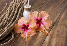 Kuuroordconcept met hibiscusbloem Royalty-vrije Stock Foto's