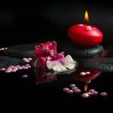 Kuuroordconcept witte en rode orchidee (cambria), rode kaars Stock Fotografie