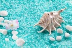 Kuuroordsamenstelling met shell en stemmende overzeese kristallen Stock Afbeeldingen