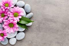 Kuuroordstenen en bloemen op grijze achtergrond Royalty-vrije Stock Afbeeldingen