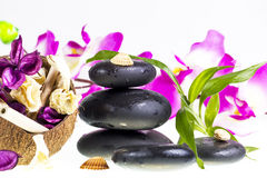 Kuuroordstenen en kokosnoot Stock Fotografie