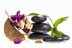 Kuuroordstenen en kokosnoot Stock Foto's