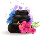 Kuuroordstenen met hibiscus Stock Afbeelding