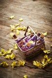 Kuuroordstilleven met bloembloemblaadjes Royalty-vrije Stock Afbeelding