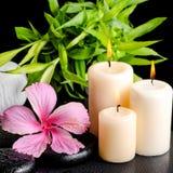 Kuuroordstilleven van roze hibiscusbloem, takjebamboe, Thaise kruiden Stock Foto's