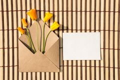 Kuvert av kraft papper med ett tomt meddelande och med härligt arkivbild