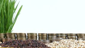 Kuwait flag waving with stack of money coins and piles of wheat. And rice seeds stock footage