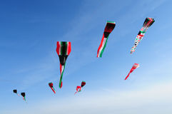 Kuwait flaggadrakar Arkivfoton