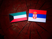 Kuwaiti flag with Serbian flag on a tree stump isolated. Kuwaiti flag with Serbian flag on a tree stump stock photos