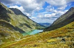 Kuyguk do lago Fotos de Stock Royalty Free