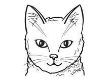 Kuzia - ältere Katze (12 y Vektor Abbildung