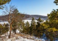 Kuznetsk Alatau. First days of spring. Sunny day in the highlands of the Kuznetsk Alatau. In March 2015. Khakassia. Siberia Royalty Free Stock Photography