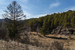 Kuznetsk Alatau. Spring in the foothills of the Kuznetsk Alatau. Land recently cleared of snow. More trees without leaves. The Republic of Khakassia. Siberia Royalty Free Stock Photos