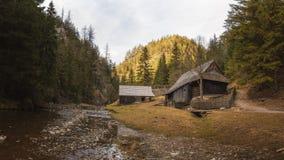 Kvacianska Dolina, Slovacchia Immagine Stock