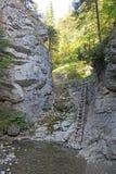 Kvacianska dolina - valley in region Liptov, Slovakia Royalty Free Stock Photo
