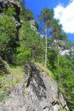 Kvacianskadolina - vallei in gebied Liptov, Slowakije royalty-vrije stock afbeelding