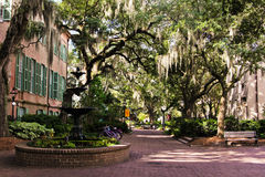 Kvadrat för högskolan av charlestonen, South Carolina Arkivfoto