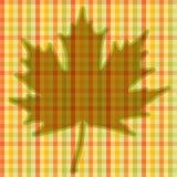 Kvadrerat höstligt kort Arkivfoton